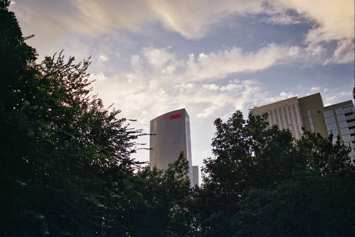 FMC Tower through the Trees