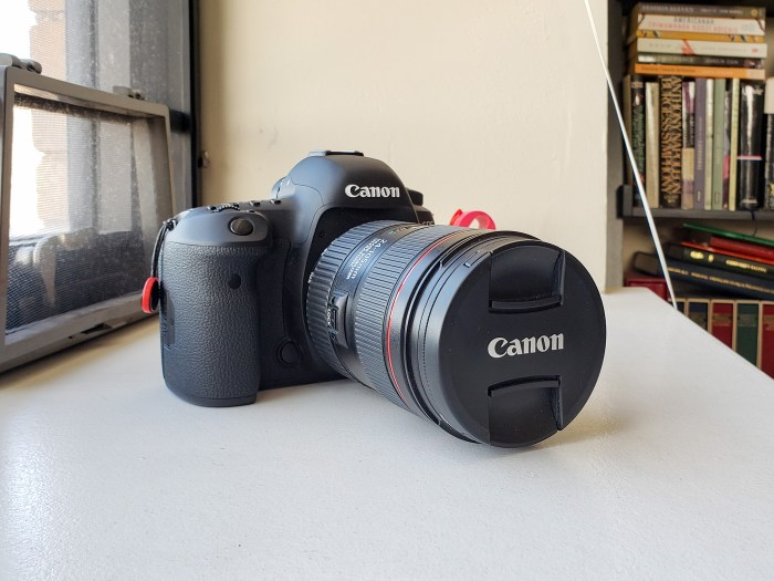 Canon EOS 5D Mark IV with a EF 24-105mm f/4L lens