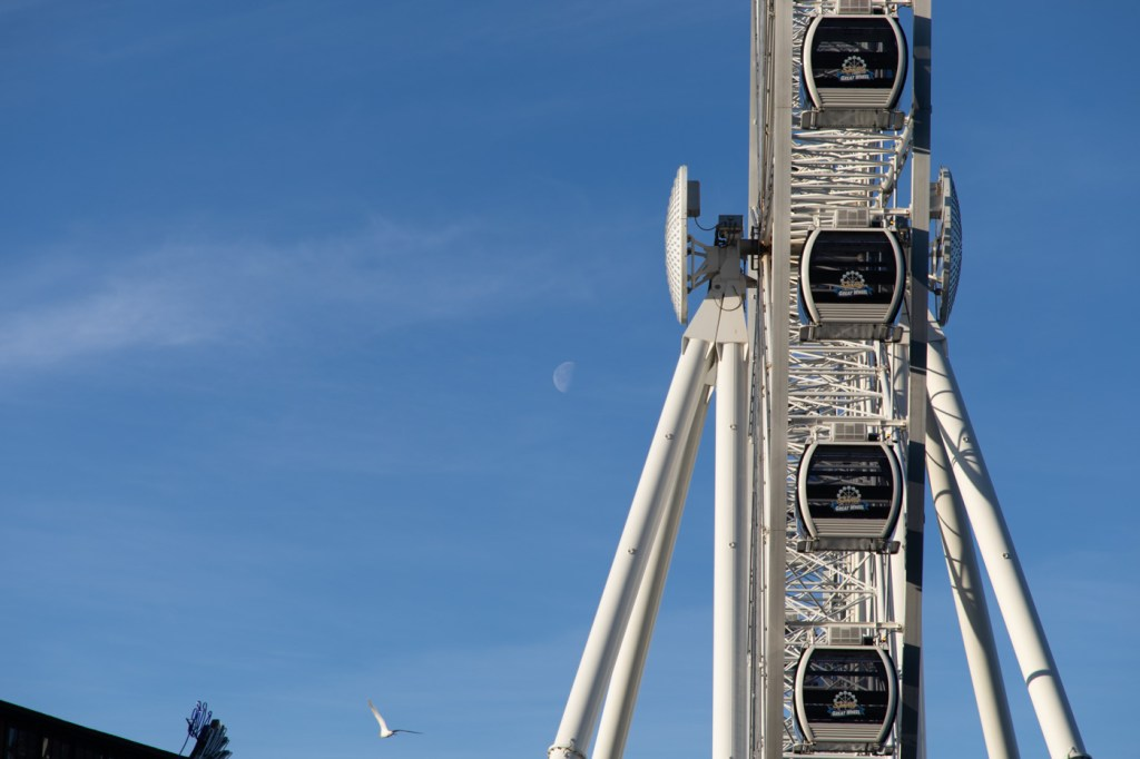 Seattle Great Wheel, Seagull, and Moon