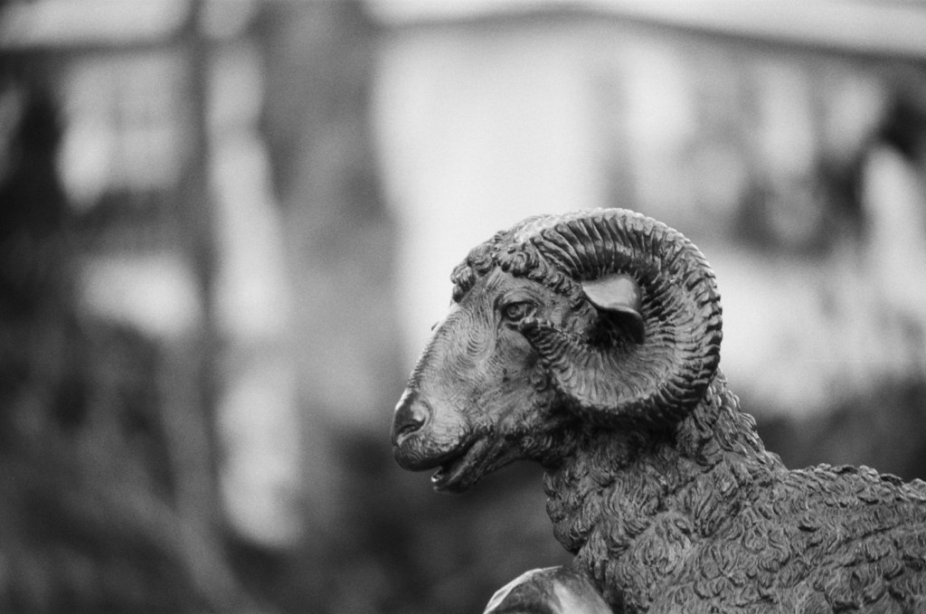Fitler Square Ram