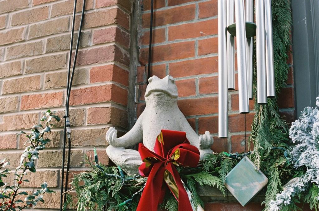 Meditating Christmas Frog