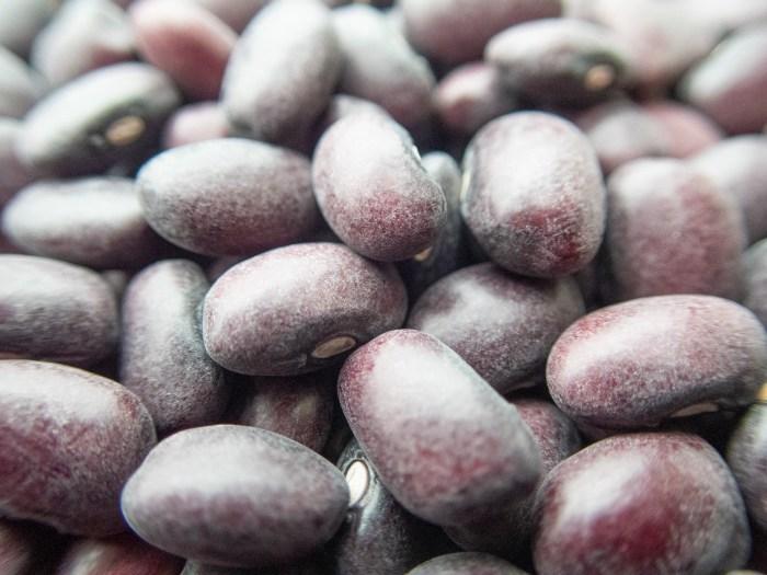 Macro Domingo Rojo Beans