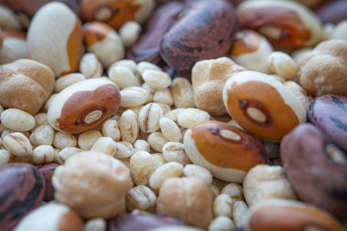 Macro Beans and Grains