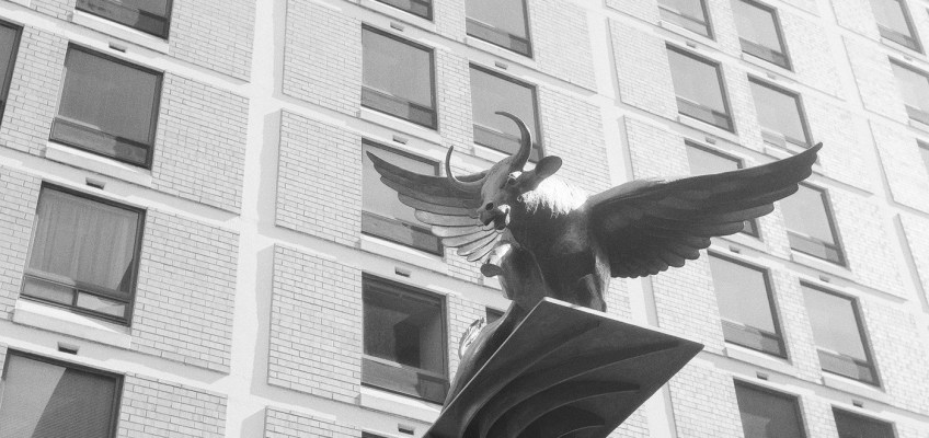 The Winged Ox