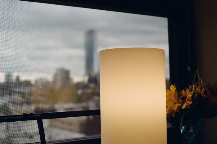 Lamp, Sunflowers, FMC Tower