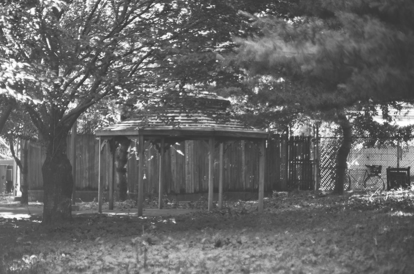 Birchwood at Grays Ferry