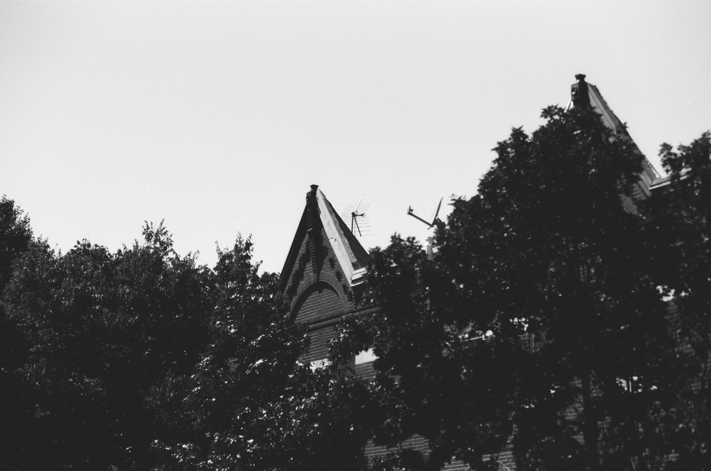 Rooftop Antennae