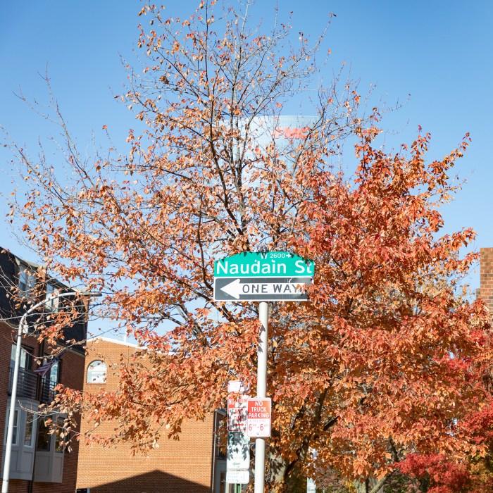 Naudain St. in Autumn