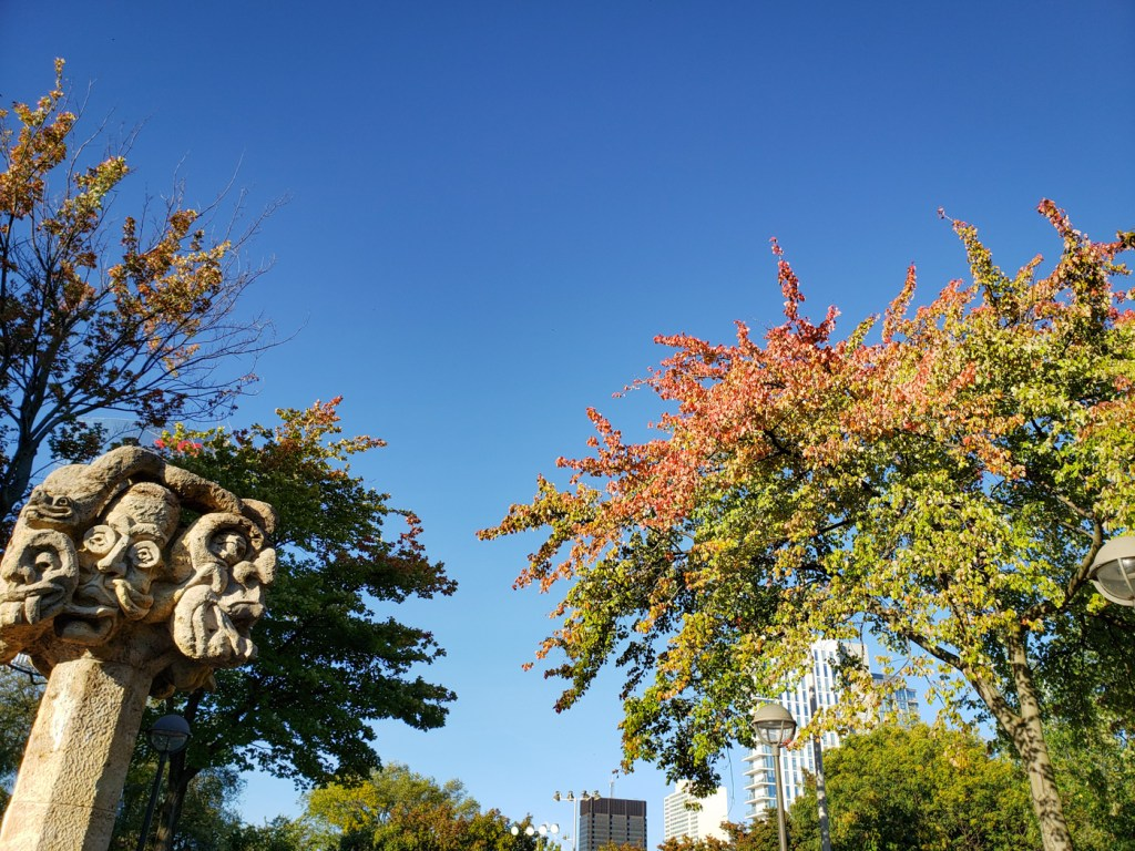 Autumn in Schuylkill River Park