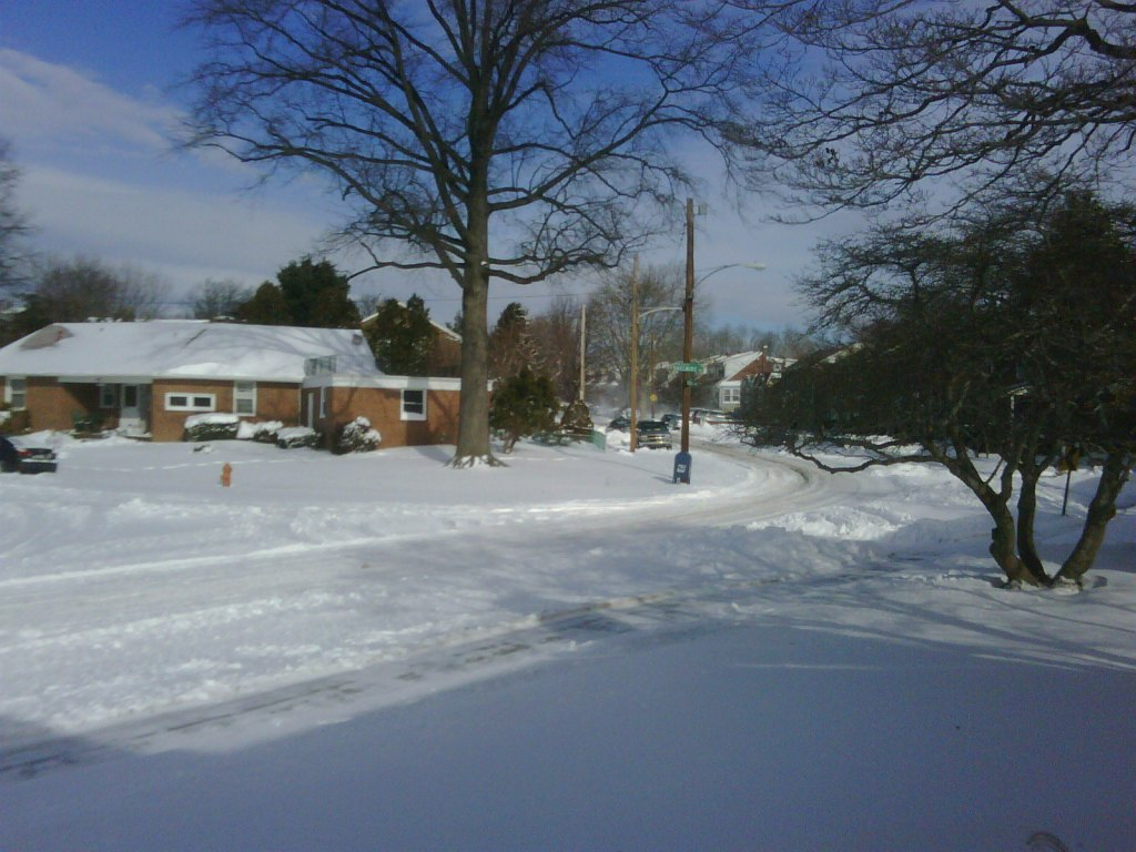 Snow in Fox Chase 2010