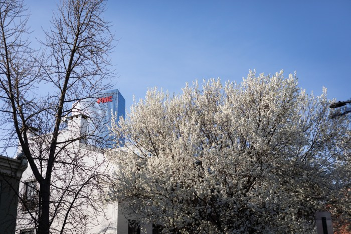 Spring Tree and FMC Tower