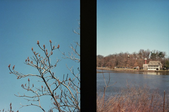 Early Spring Tree and Boathouse Row