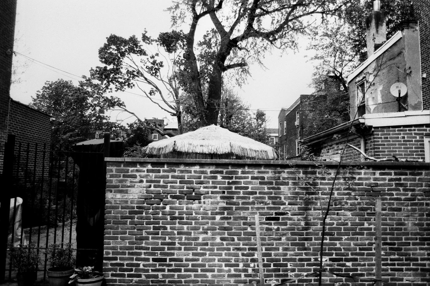 Brick Wall and Umbrella