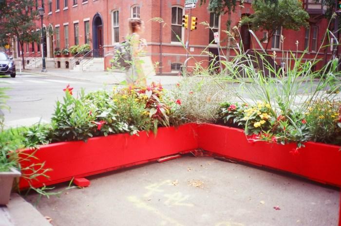 Red Flower Box