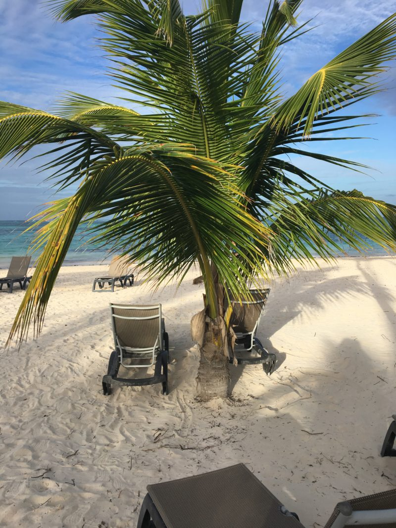 Beach view in Punta Cana