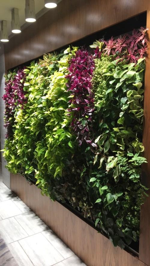 Floral wall Fort Lauderdale Beach Resort