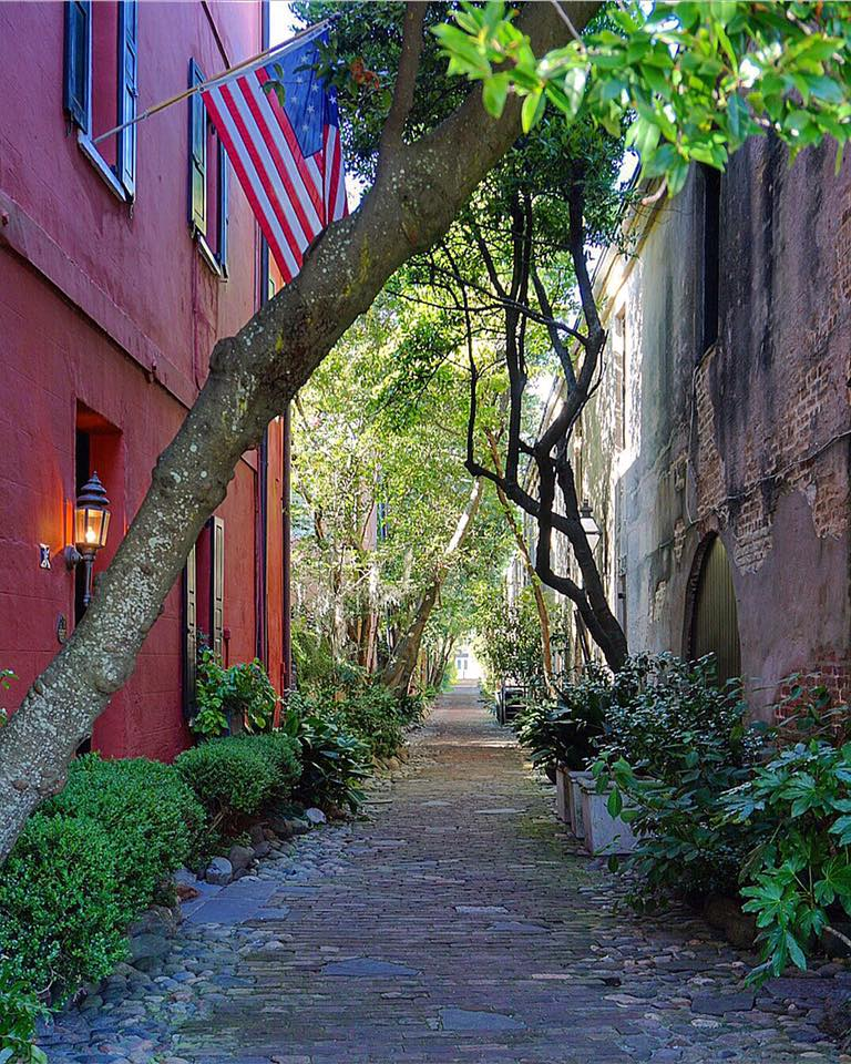 Why You'll Fall in Love With Charleston | This Darling World