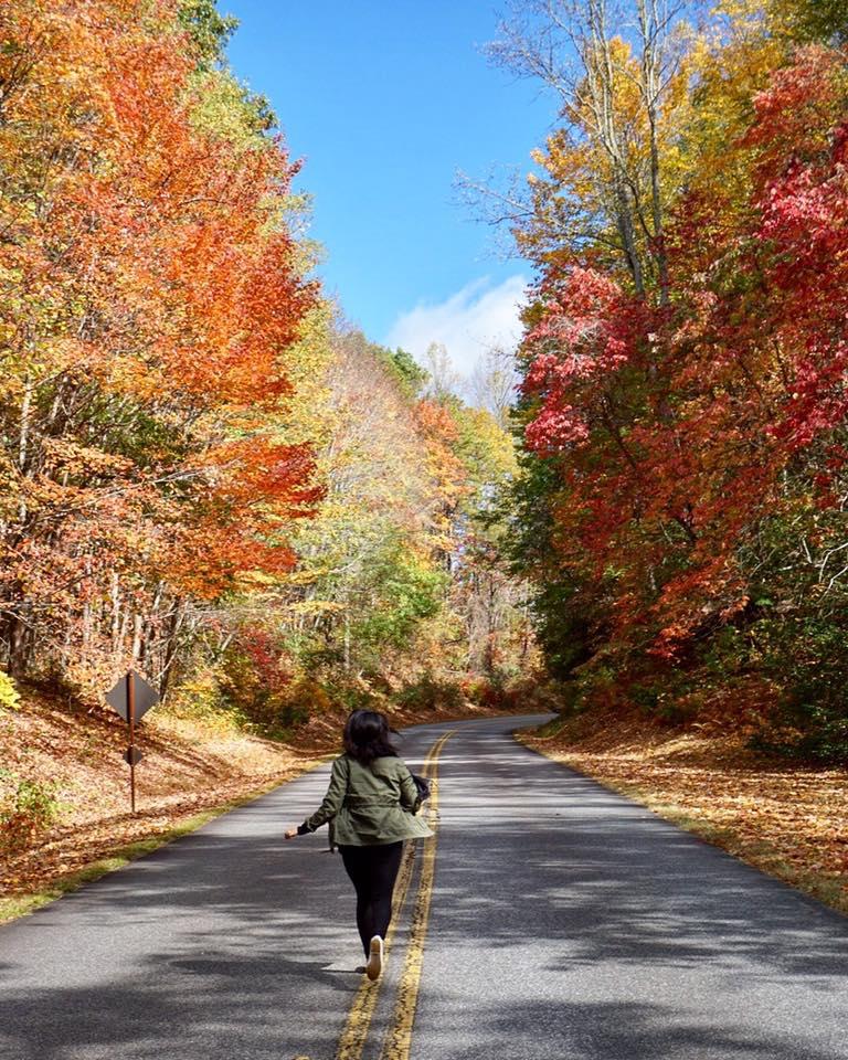 Blue Ridge Parkway fall drive