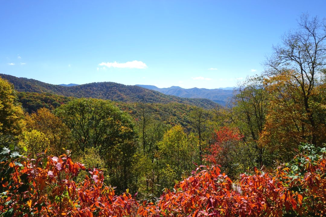 Fall in the Smoky Mountains | thisdarlingworld.com