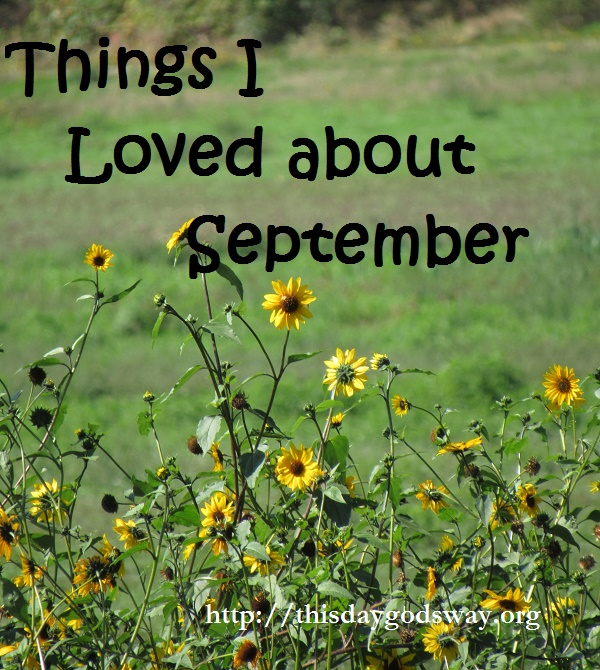 Things I'm Learning & Loving in September