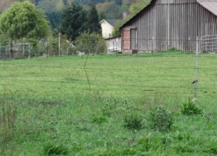 pasture pic eight