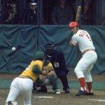 Johnny Bench 1972 NL MVP
