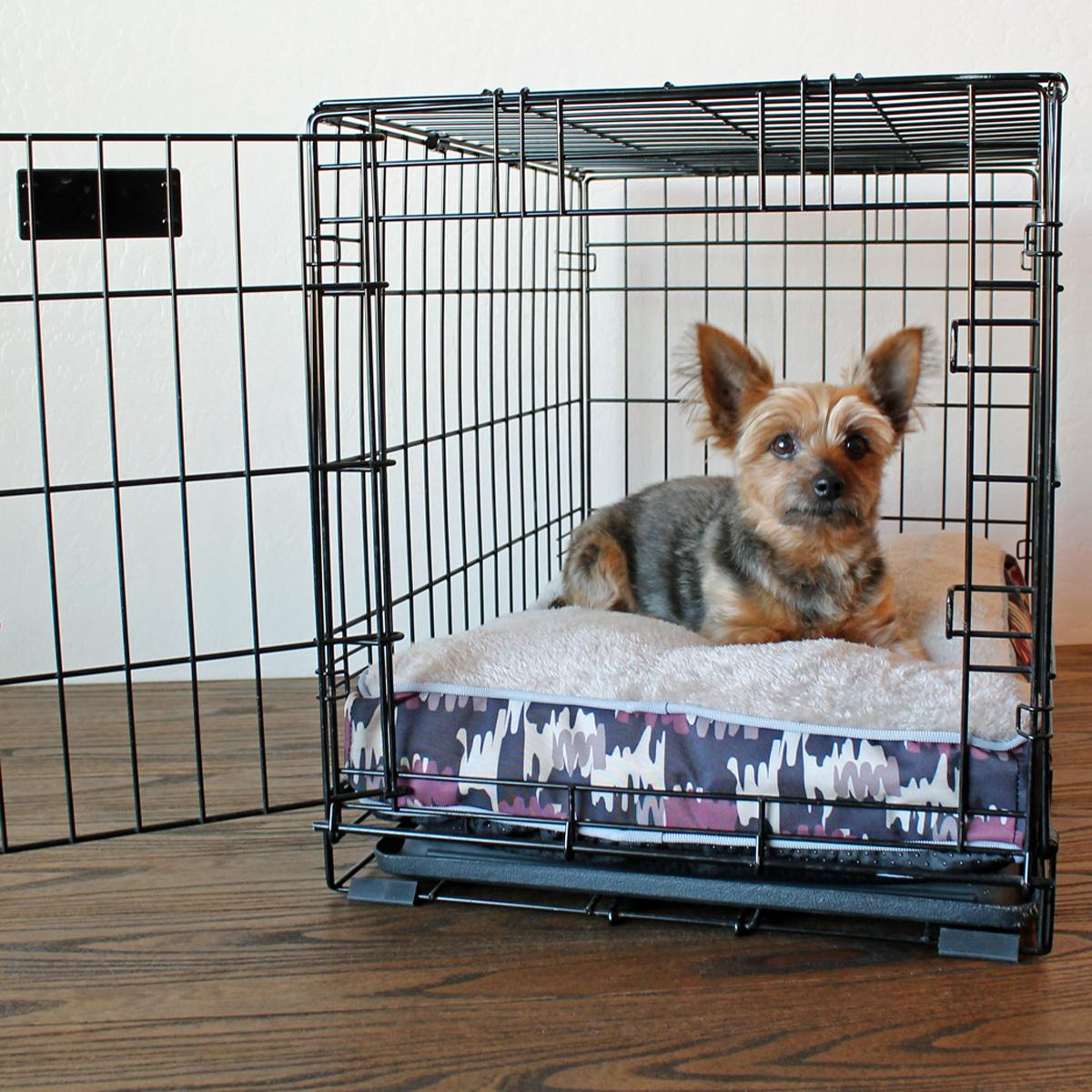 dog whines in crate