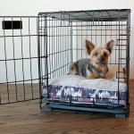 Crate Training A Puppy: Whining, Peeing, & Chewing Solved
