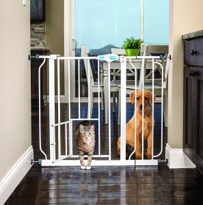 pet gate / keep dogs busy while at work