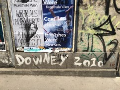 Downey 2010? Wasn't this Downey.