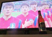 South Korea 2 Algeria 4 Fifa World Cup 2014