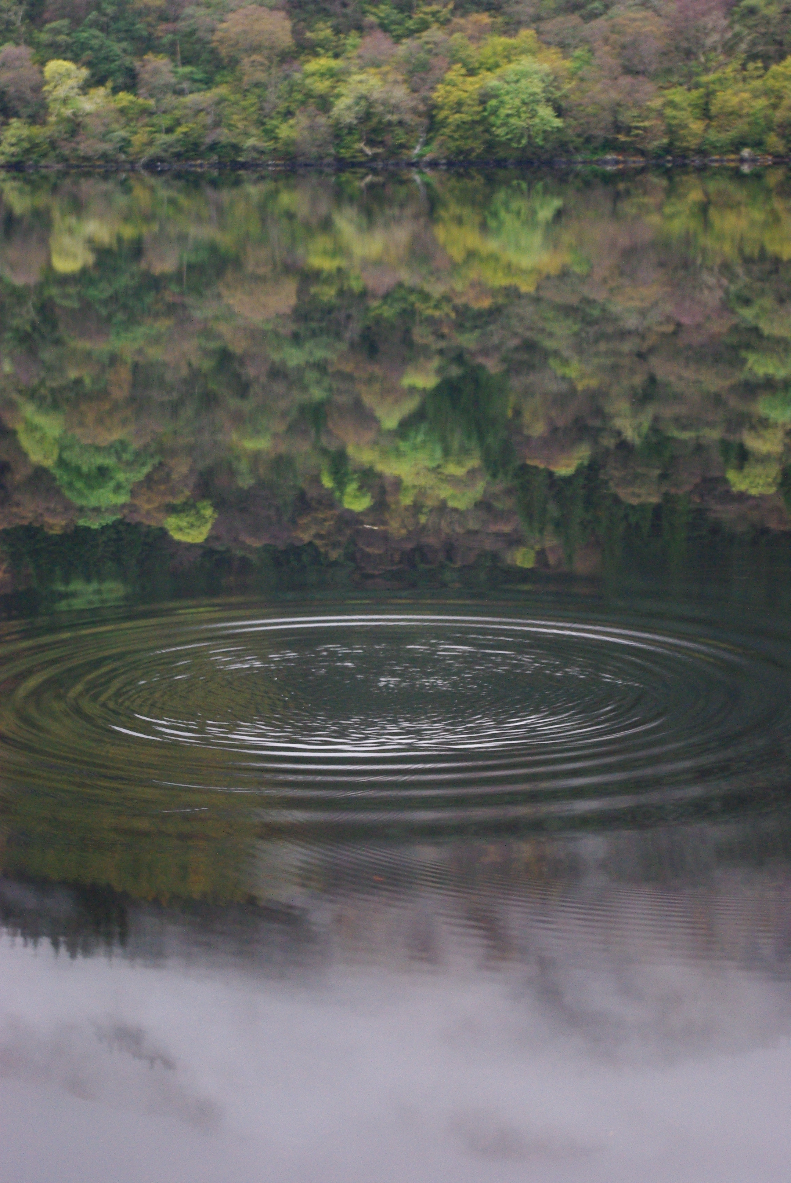pebble ripples, reflection, loch eck