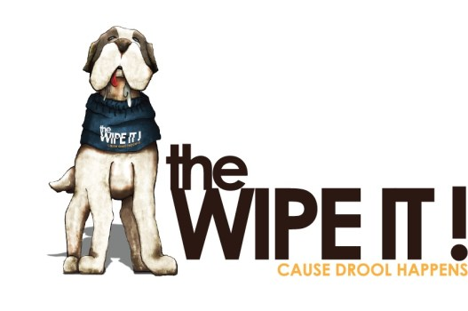 wipe_it_illustrated_logo