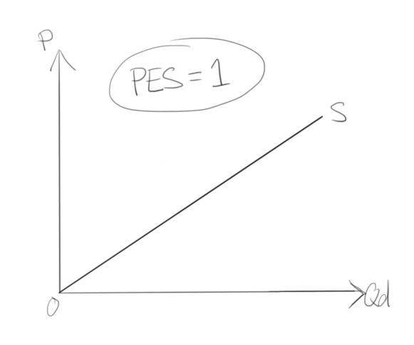 Elasticity (Microeconomics) Study Guide