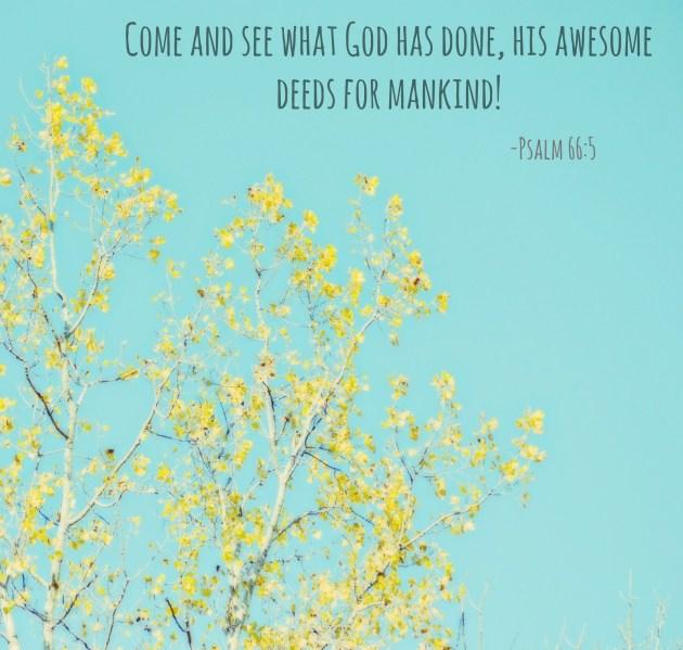 Psalm 665