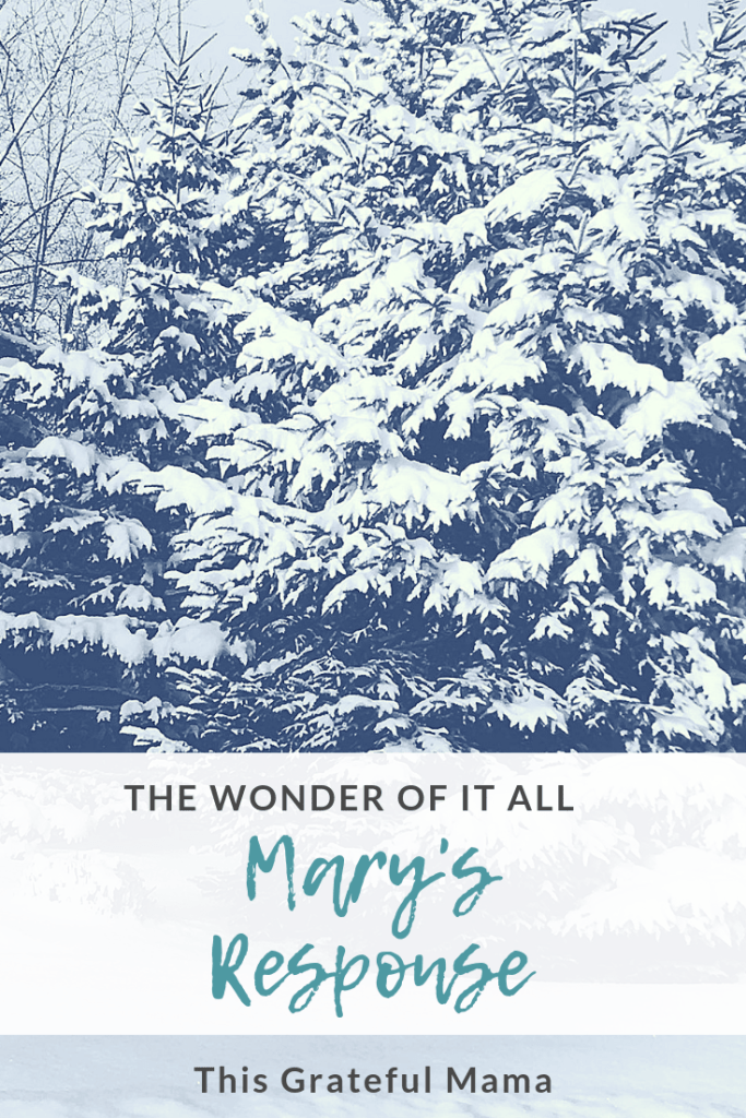 The Wonder of It All: Mary's Response |thisgratefulmama.com #mary #christmas #christian #faith #boldfaith #response #jesus #angel