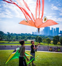 Squid and Fish in the Sky-52