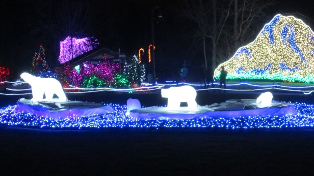 The Zoolights at Night!