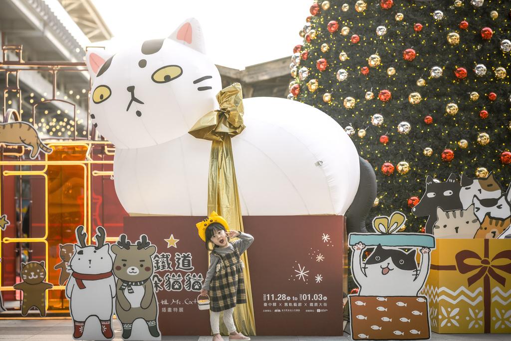 大貓日景3.jpg