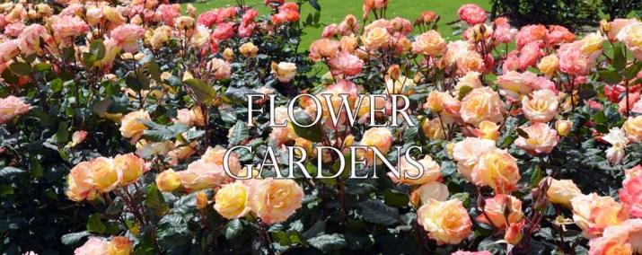 flower gardens pictures. Flower Gardens Pictures
