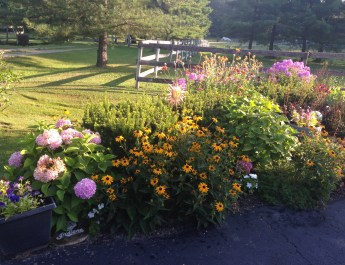 Cheryl's Garden – A Gorgeous Mix of Flowers, Vegetables and Containers