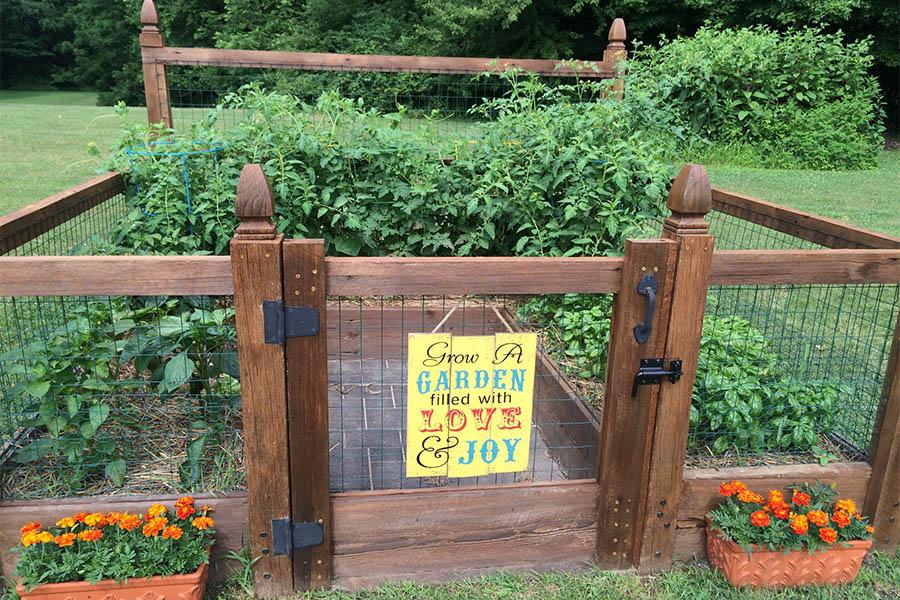 share this - Garden Joy