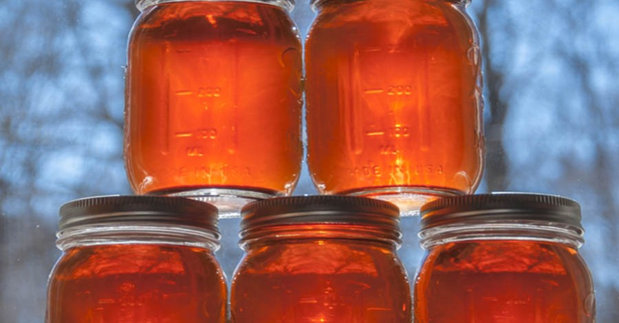 How To Make Homemade Maple Syrup – From Start to Finish!