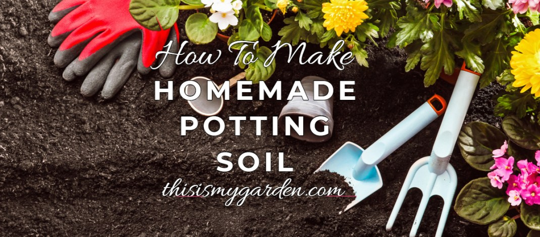 The Perfect Recipe To Make Incredible Homemade Potting Soil