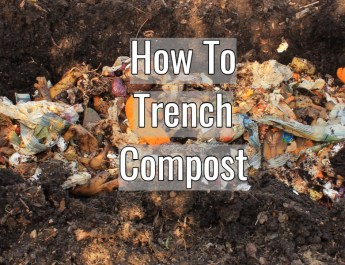 how to trench compost