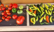 How To Build A DIY Harvest Rack To Ripen Fruits & Vegetables