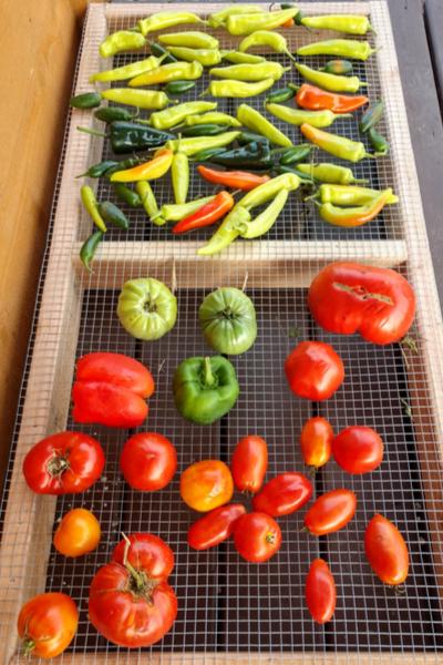 ripening vegetables