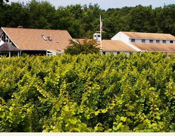 Stonington Vineyards Winery