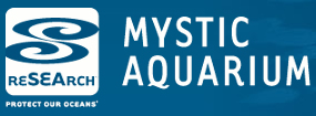 Volunteer for Mystic Aquarium