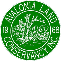 volunteer for avalonia land conservancy